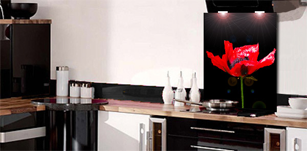 Red Poppy Splashback